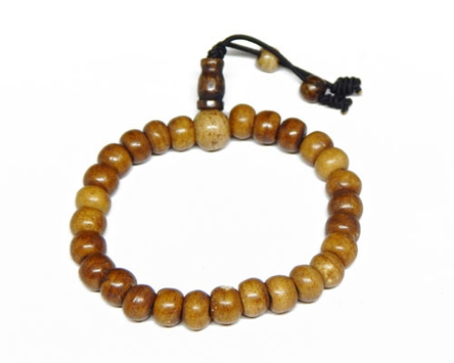 Bone Beads Bracelet